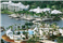 Marriott's Cypress Harbour Aerial View of Resort and Pools