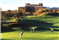 The Westin Kierland Villas Scottsdale Arizona Golfing