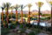 The Westin Kierland Villas Mountains
